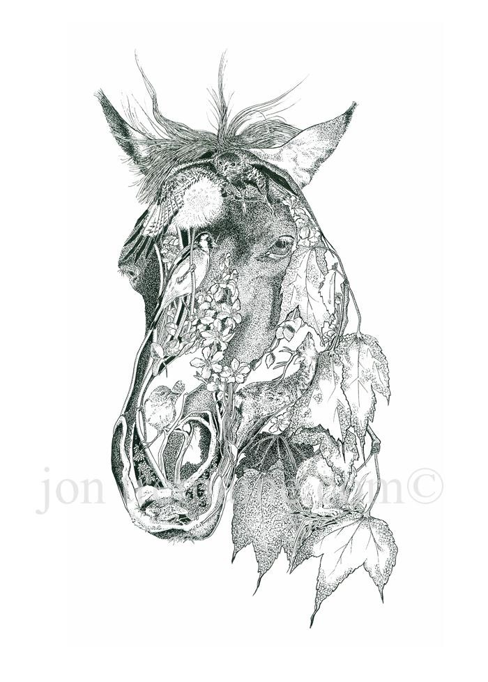 Print From An Original Pen And Ink Drawing Of A Horse