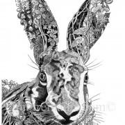 Portrait Ltd Hare 02_2