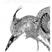 Portrait Ltd Heron 01_3