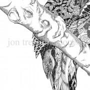 Portrait Ltd Kingfisher_3