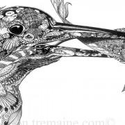 Portrait Ltd Kingfisher_4