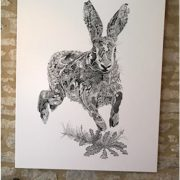 Running Hare Canvas photo